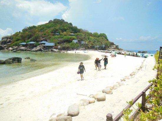 Ko Nang Yuan, Tailandia: แนวสันทราย