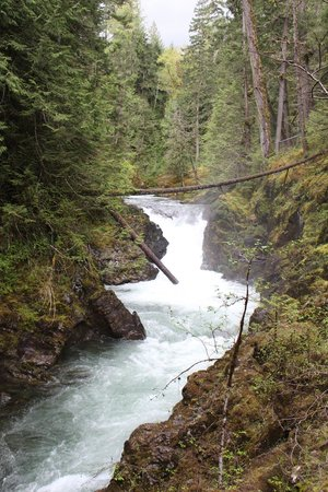 Little Qualicum Falls Provincial Park: Lower Falls