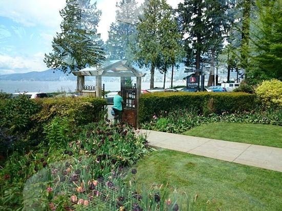 Teahouse in Stanley Park : View from our table