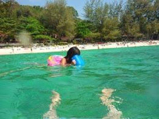 Phi Phi Paradise Pearl Resort: ホテル前のビーチ。魚もチラホラ。