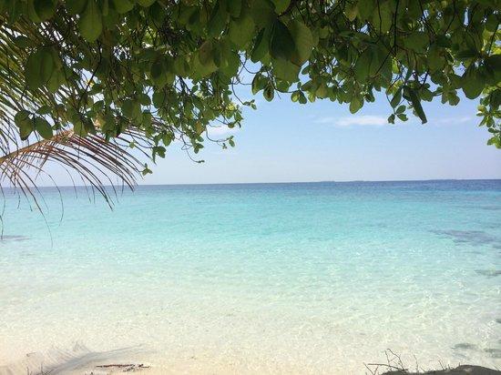 Ocean Vista Maafushi Maldives: Фихалхохи