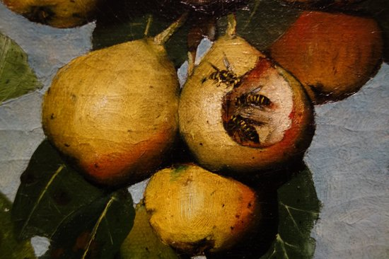 National Gallery of Art : J. Decker: Ripening Pears, Detail
