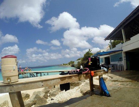 Captain Don's Habitat: Beautiful blue waters of Bonaire at Habitat.