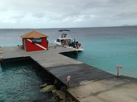 """Captain Don's Habitat: """"Papa Dock"""" short walk from convenient rinse tanks for divers with compressor right on the dock."""