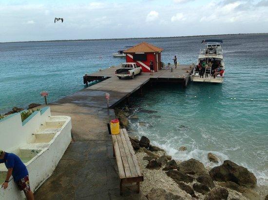 Captain Don's Habitat: View of rinse tanks short walk from boat loading area.