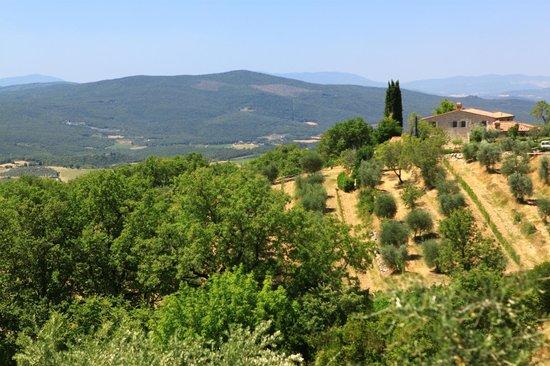 Hotel More Di Cuna: La Toscane