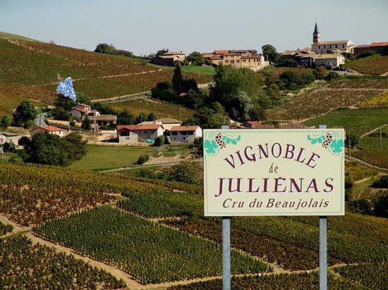 Pruzilly, France : le Raisin Bleu au coeur du vignoble de Julienas