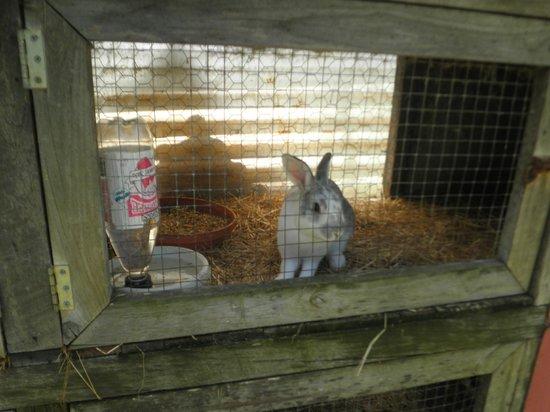 Albany Bird Park and Marron Farm: Awwwwww