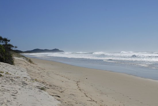 Byron Holiday Park: Tallows Beach 10 minutes walk away