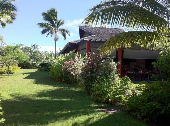 Manava Suite Resort Tahiti : jardin