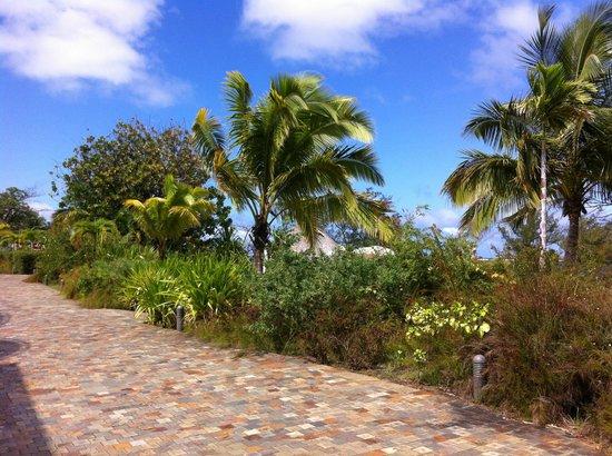 Manava Suite Resort Tahiti: jardin