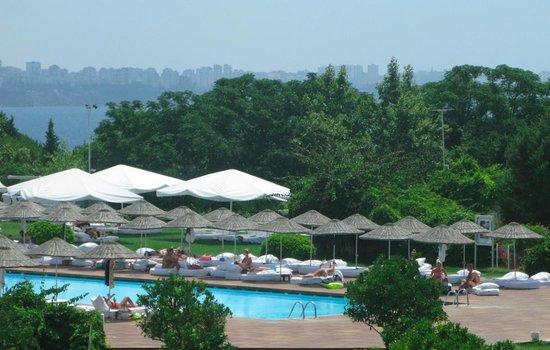 Hotel Su : Pool View