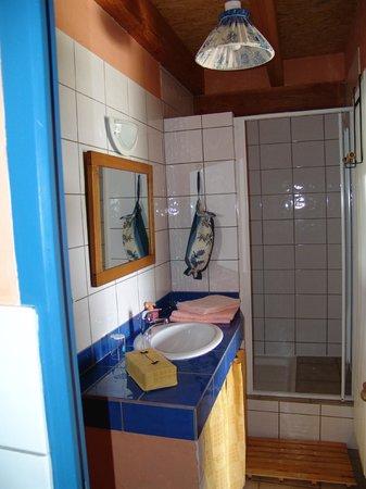 Le Raisin Bleu : salle d'eau
