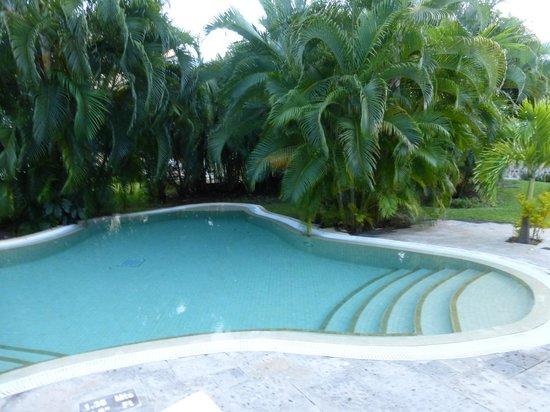 Royal Hideaway Playacar: Small pool by villa.