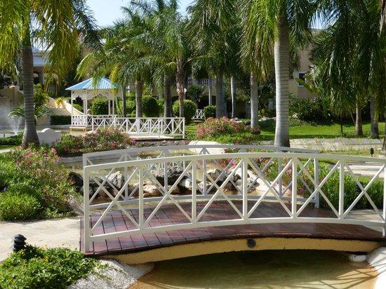 Royal Hideaway Playacar: Gardens
