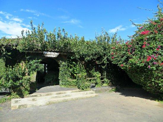 Hotel Paradis Malahide: The hotel entrance