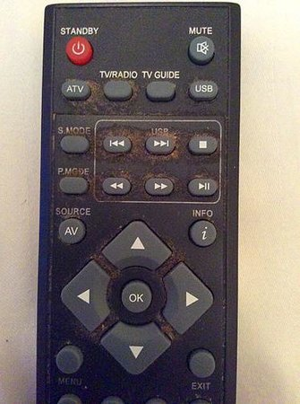 Lansdowne Hotel : When was the last time you saw a remote control this dirty?