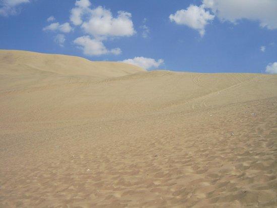 Viajes Paracas : Huacachina