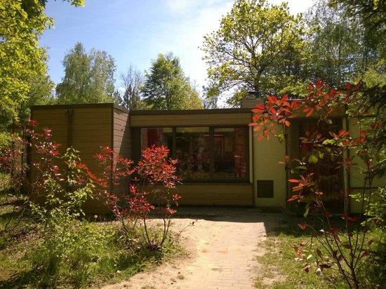 Center Parcs Les Bois-Francs : cottage vue de devant