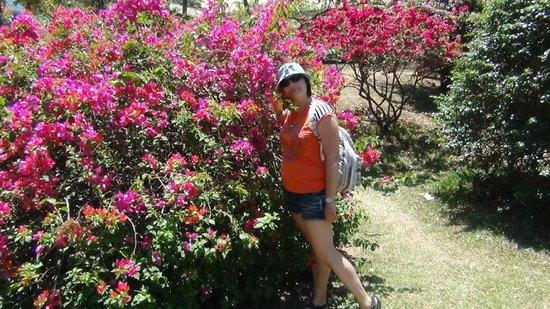 Royal Botanical Gardens: Цветы