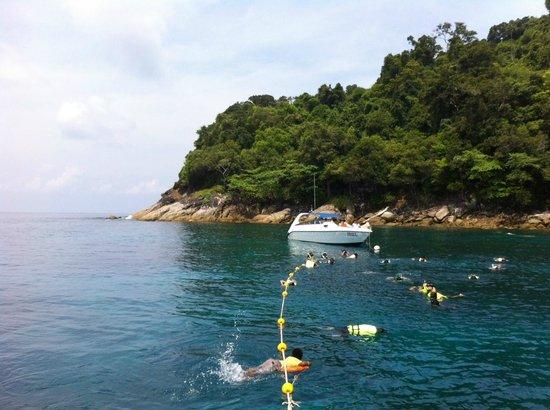 Ko Tachai Island: Our snorkeling tour.