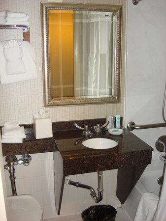 Chicago's Essex Inn: Bathroom