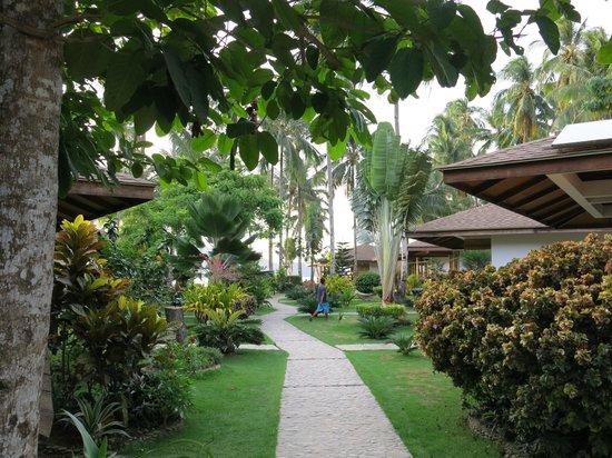 Cadlao Resort: From the Garden