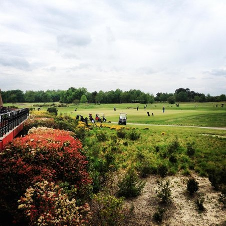 Golf du Médoc Resort : Vue Practice de la terrasse