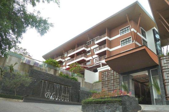Peach Blossom Resort : Hotel entrance