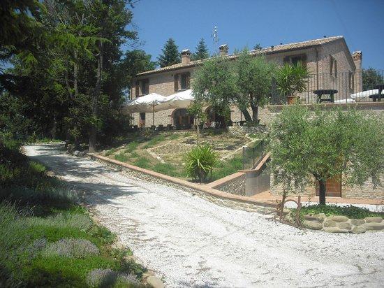 Azienda Agrituristica Biologica Villa Rosa: esterno della struttura