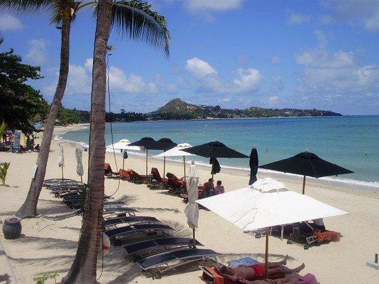Pavilion Samui Villas & Resort : View of the beach