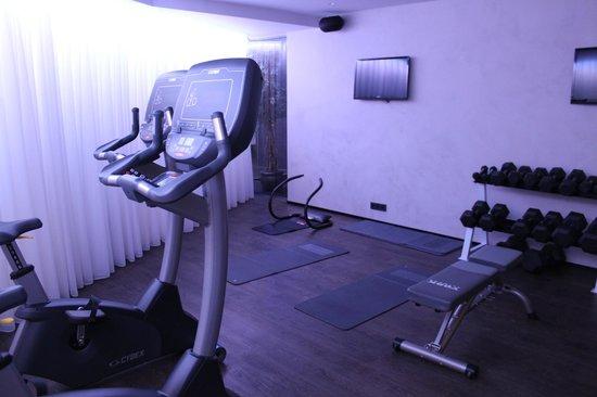 CenterHotel Thingholt: gym