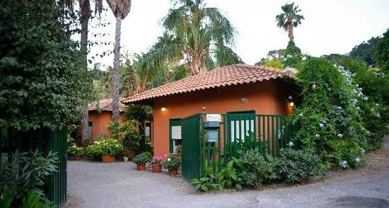 Le Palme Garden: la reception