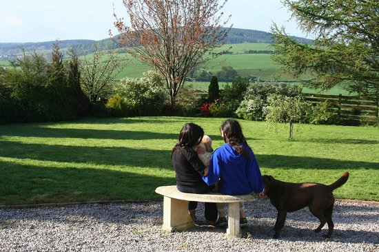 Smithston Farmhouse : guests enjoying the spring sunshine