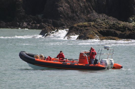 Ilfracombe Sea Safari: Coming round to pick us up in Ilfracombe harbour.