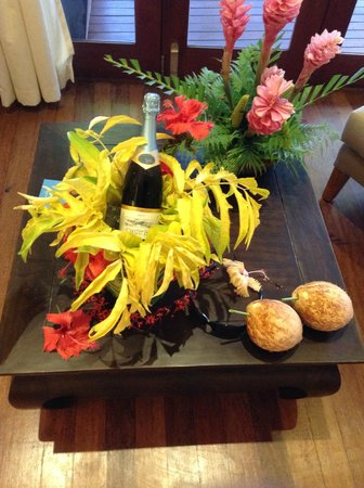 Nanuku Auberge Resort: Welcome gift for honeymooners! Oyster Bay is my favourite - how did you know!?!