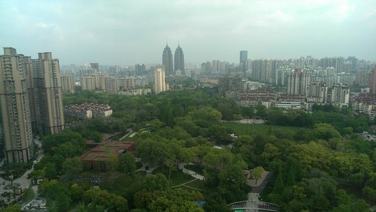New World Shanghai Hotel: Morning View