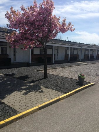 Hotel Herning: Udendørsareal