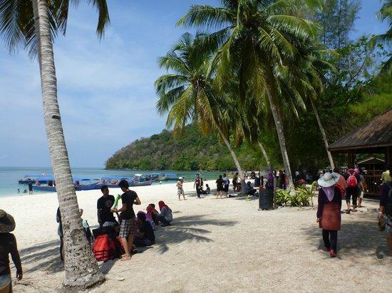 Beras Basah Island: Pic 1