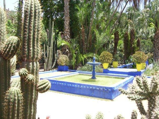 Hotel Chems : Jardin Majorelle