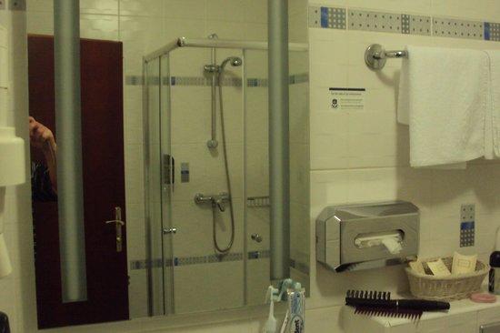BEST WESTERN PLUS Hotel Meteor Plaza: bagno