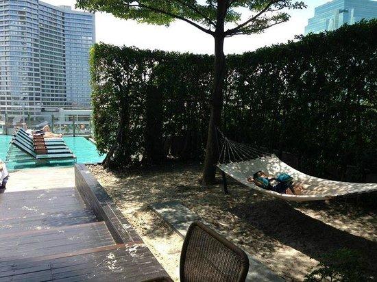 Millennium Hilton Bangkok: Swimming pool