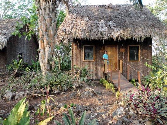 Mariposa Jungle Lodge : Cabana