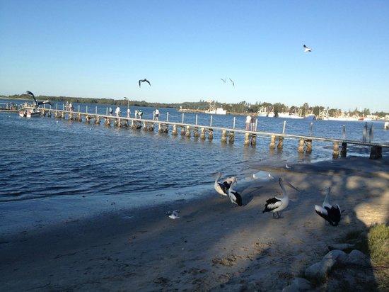 Blue Dolphin Holiday Resort: Jetty
