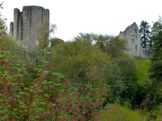 Kildrummy Castle Hotel: Superb garden and old Castle