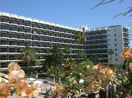 Occidental Margaritas : Main Hotel