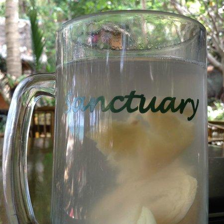 The Sanctuary Thailand: beach, jungle, ginger tea