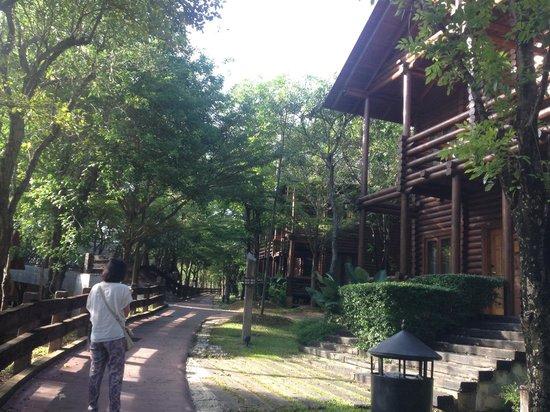 Philea Resort & Spa: pavillion suite and walk way