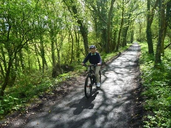 Scarborough to Whitby Rail Trail: Cinder track Scalby to Robin Hood' Bay