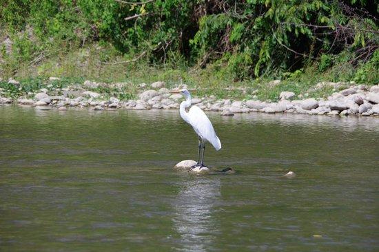 Aventura Mundo : Floating the River